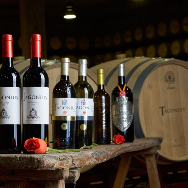 Vino Tangonius
